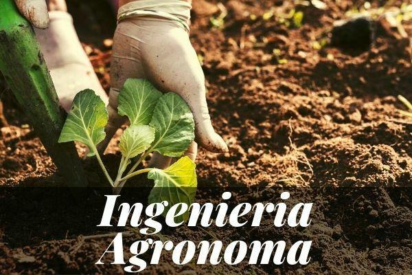 master-ingeniera-agronoma