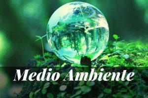Los Mejores Máster en Medio Ambiente